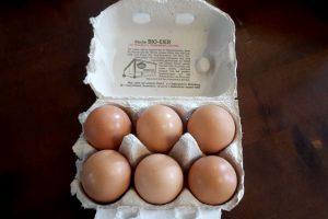 Bio-Eier von Gut Onnau