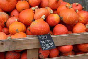 Verkauf auf Gut Onnau Bio-Gemüse